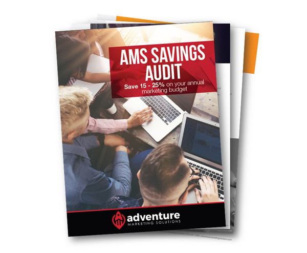 AMS Savings Audit